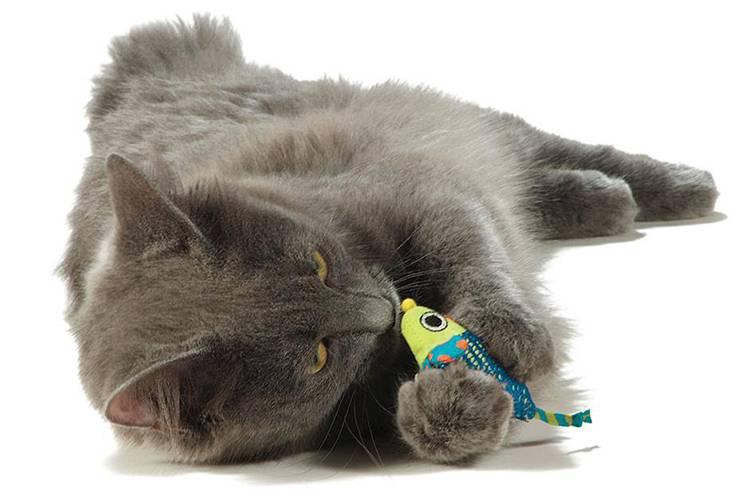 Игрушки для кошек с кошачьей мятой