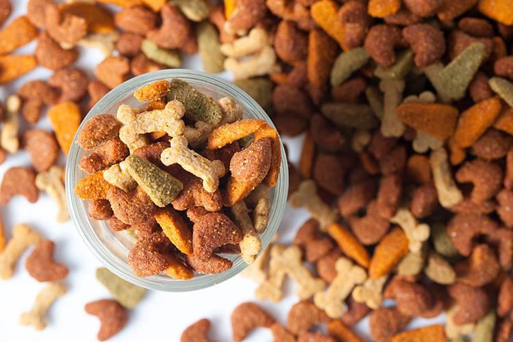 Нужно ли питомцам разнообразие в еде?