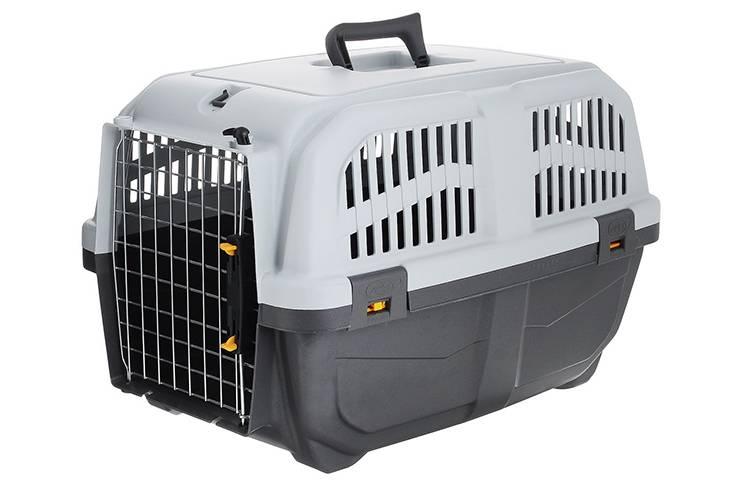 Перевозка кошки самолетом