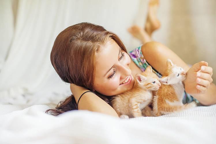 Почему котенок лижет волосы и зарывается в них?